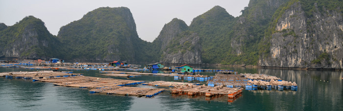 Fishing village Ha Long Bay